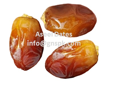 GNS FOOD - DATES SUPPLIERS & EXPORTERS FROM UAE - THE BEST FOOD